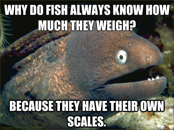 Why do fish always know how much they weigh?  Because they have their own scales.  Bad Joke Eel
