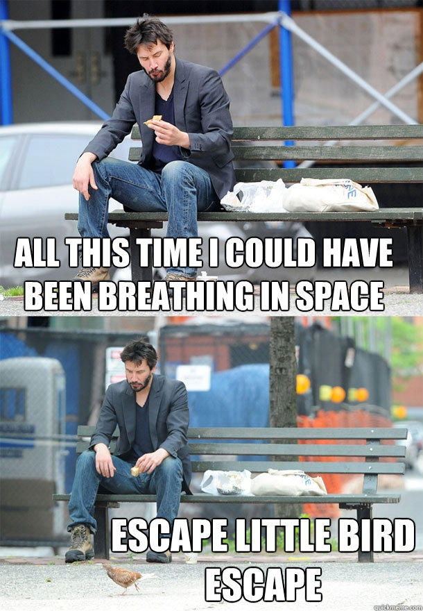 all this time i could have been breathing in space escape little bird escape  Sad Keanu