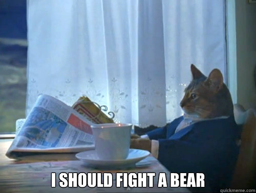 I should fight a bear