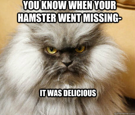 You know when your hamster went missing- it was delicious