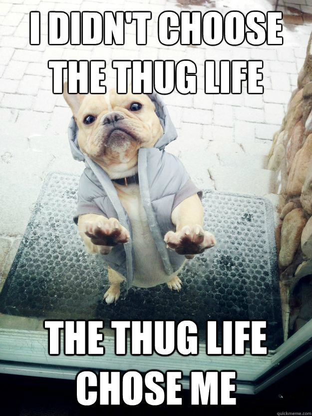 I didn't choose the Thug Life The Thug Life Chose Me - I didn't choose the Thug Life The Thug Life Chose Me  Thug Dog