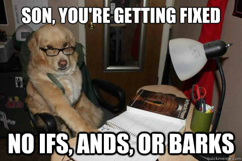 Son, You're getting fixed today No ifs, ands, or barks