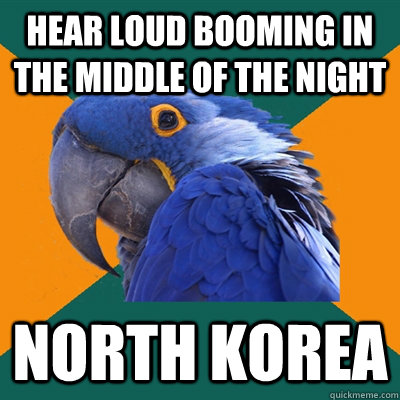 Hear Loud Booming In The Middle Of The Night North korea  Paranoid Parrot