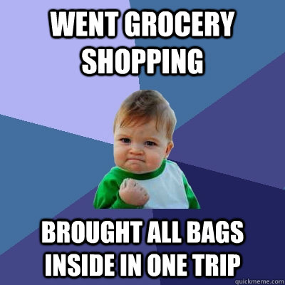 Went grocery shopping Brought all bags inside in one trip - Went grocery shopping Brought all bags inside in one trip  Success Kid