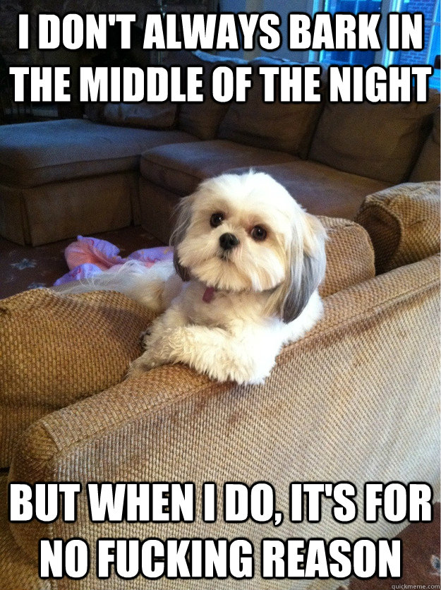 I don't always bark in the middle of the night but when I do, it's for no fucking reason  Most interesting dog in the world