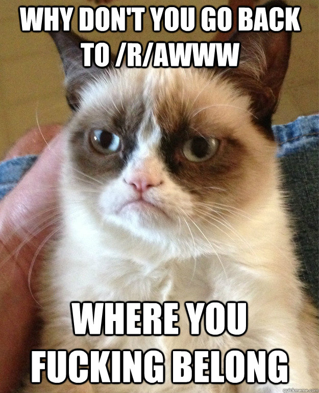 why don't you go back to /r/awww where you fucking belong - why don't you go back to /r/awww where you fucking belong  Grumpy Cat