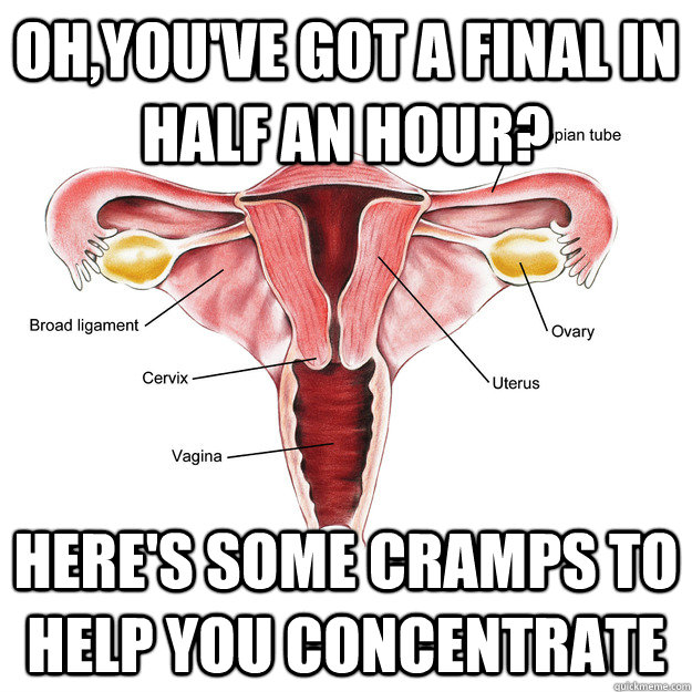 OH,YOU'VE GOT A FINAL IN HALF AN HOUR? HERE'S SOME CRAMPS TO HELP YOU CONCENTRATE