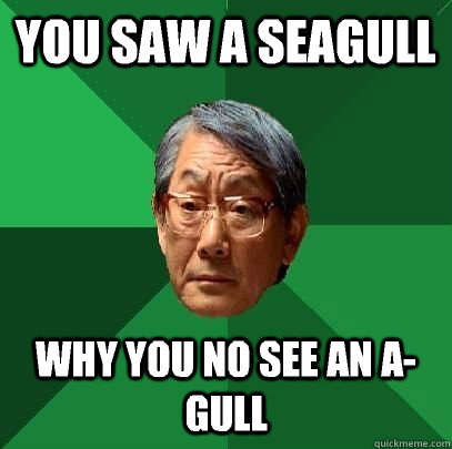 You saw a seagull Why you no see an A-gull - You saw a seagull Why you no see an A-gull  High Expectations Asian Father