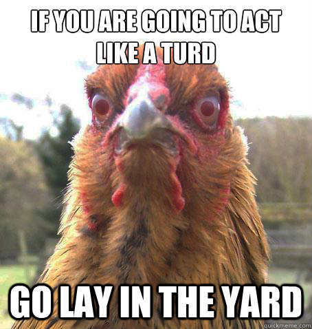 If you are going to act like a turd Go lay in the yard  RageChicken