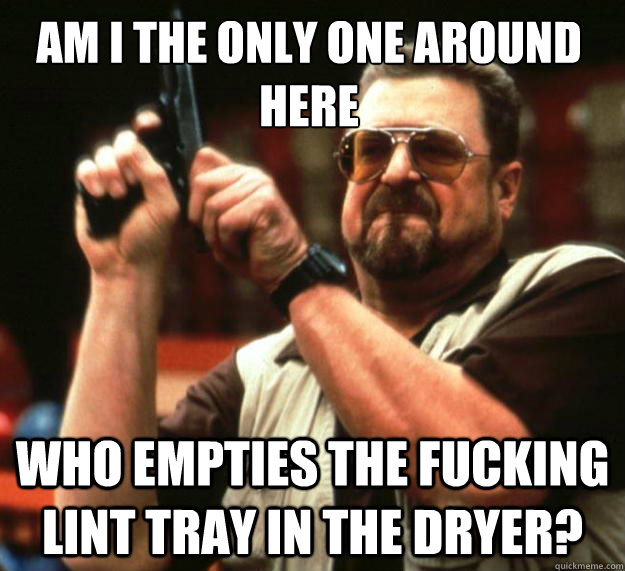 Am I the only one around here who empties the fucking lint tray in the dryer? - Am I the only one around here who empties the fucking lint tray in the dryer?  Walter