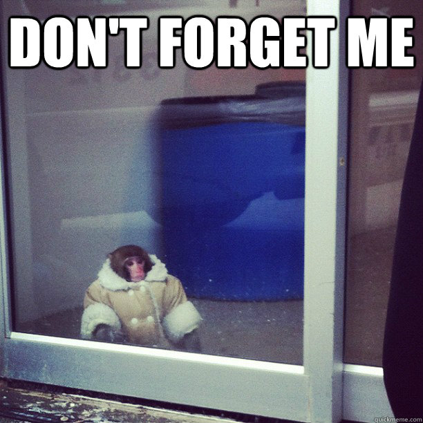 DON'T FORGET ME  - DON'T FORGET ME   Ikea Monkey