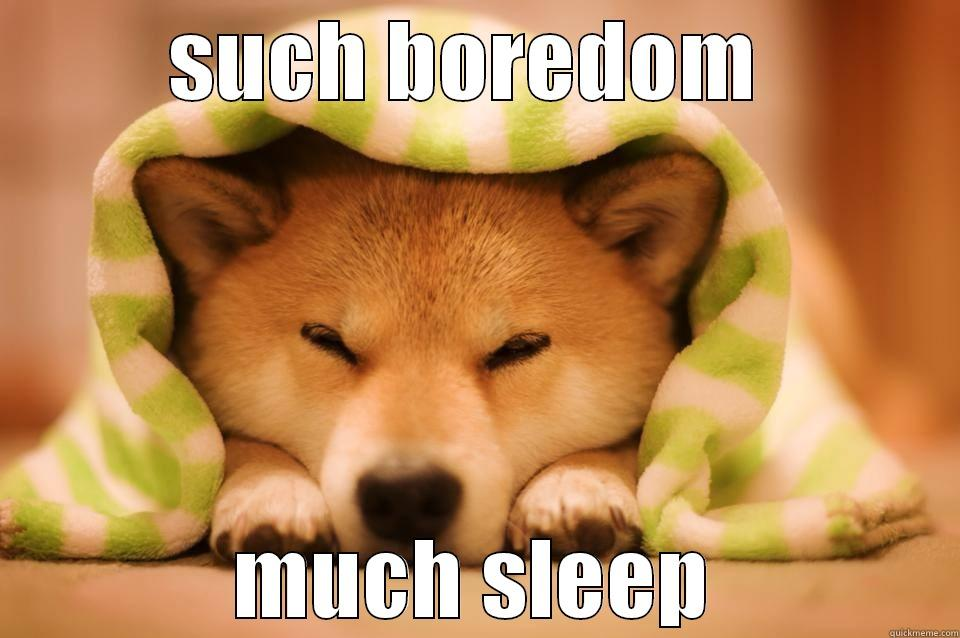 Sleepy Doge Quickmeme