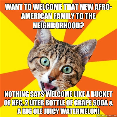 want to welcome that new afro-american family to the neighborhood? nothing says welcome like a bucket of KFC, 2 liter bottle of grape soda & a big ole juicy watermelon! - want to welcome that new afro-american family to the neighborhood? nothing says welcome like a bucket of KFC, 2 liter bottle of grape soda & a big ole juicy watermelon!  Bad Advice Cat