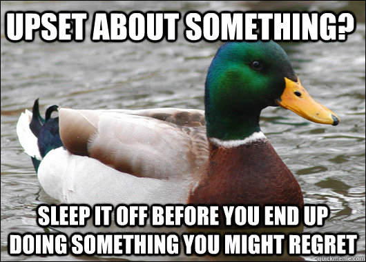 Upset about something? sleep it off before you end up doing something you might regret - Upset about something? sleep it off before you end up doing something you might regret  Actual Advice Mallard