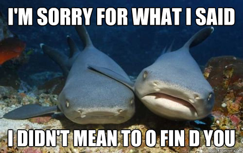 Funny I M Sorry Meme : I m sorry for what said didn t mean to o fin d you