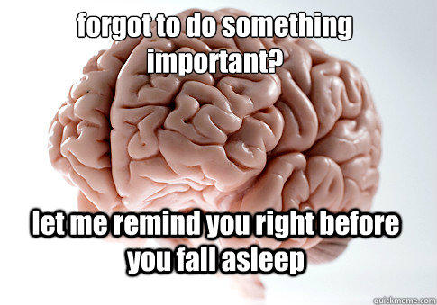 forgot to do something important? let me remind you right before you fall asleep  - forgot to do something important? let me remind you right before you fall asleep   Scumbag Brain