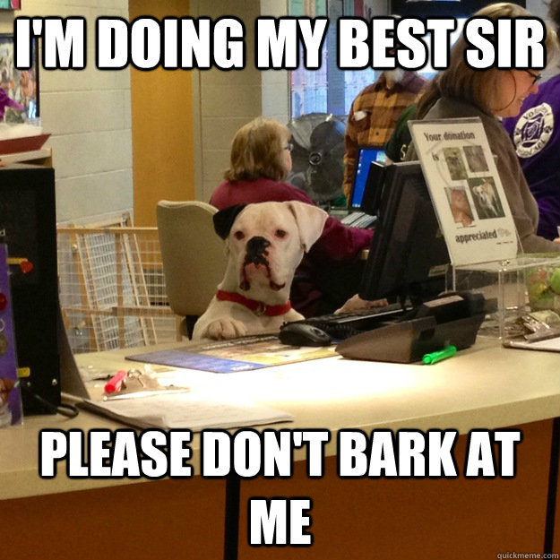 I'm doing my best sir please don't bark at me - I'm doing my best sir please don't bark at me  Service Agent Dog