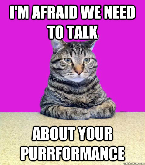 I'm afraid we need to talk About your purrformance