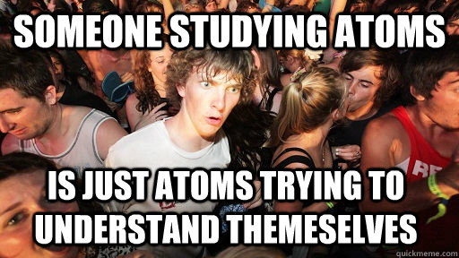 Someone studying atoms Is just atoms trying to understand themeselves - Someone studying atoms Is just atoms trying to understand themeselves  Sudden Clarity Clarence