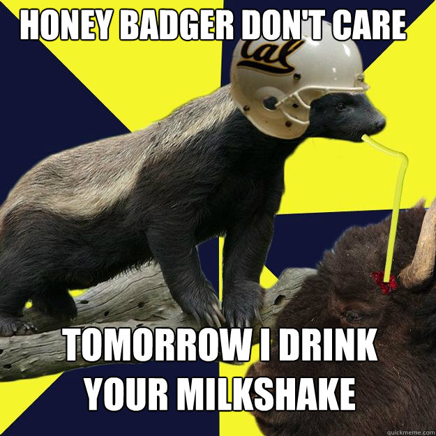 Honey badger don't care tomorrow i drink your milkshake - Honey badger don't care tomorrow i drink your milkshake  Honeybadgerbrains