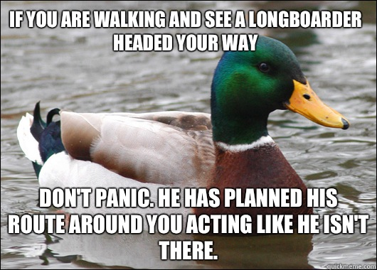 If you are walking and see a longboarder headed your way Don't panic. He has planned his route around you acting like he isn't there. - If you are walking and see a longboarder headed your way Don't panic. He has planned his route around you acting like he isn't there.  Actual Advice Mallard