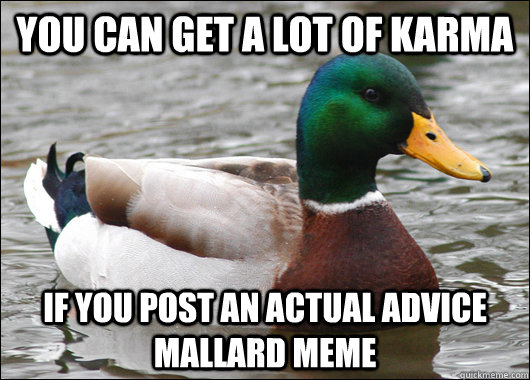 You can get a lot of Karma If you post an actual advice mallard meme - You can get a lot of Karma If you post an actual advice mallard meme  Actual Advice Mallard