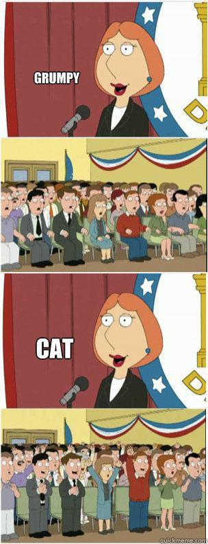 GRUMPY CAT - GRUMPY CAT  911 lois