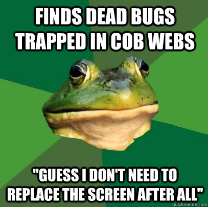 finds dead bugs trapped in cob webs