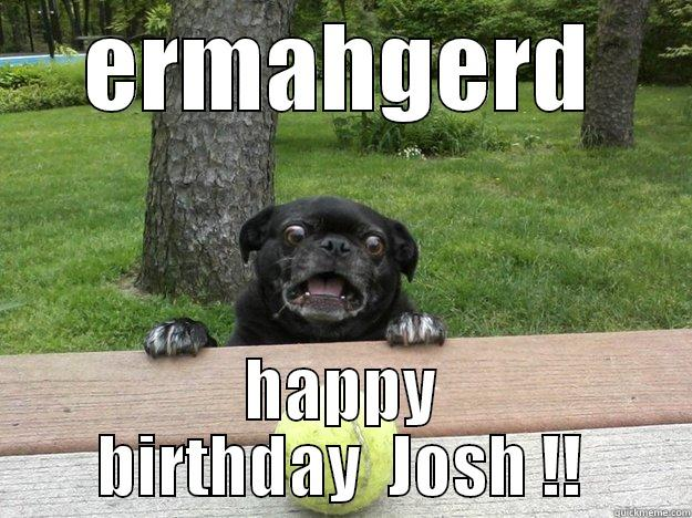 ERMAHGERD HAPPY BIRTHDAY JOSH Berks Dog