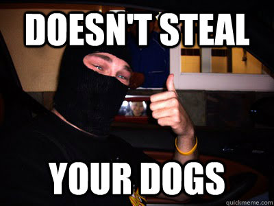 Doesn't Steal Your dogs  Good Guy Burglar