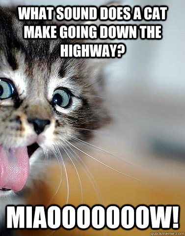 what sound does a cat make going down the highway? miaooooooow!
