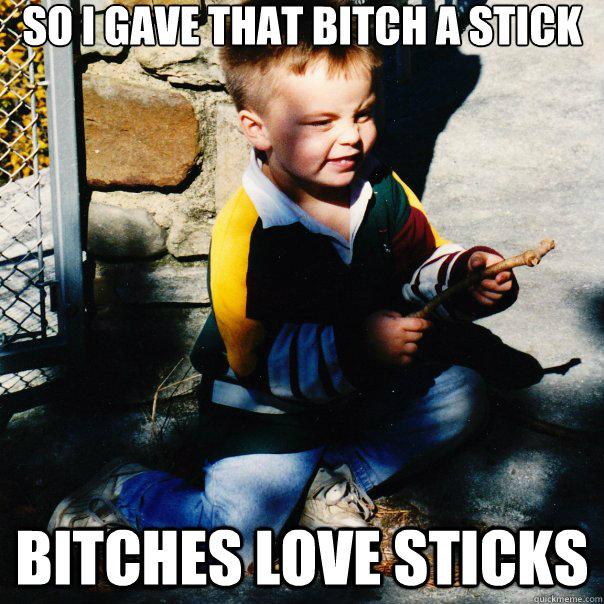 So i gave that bitch a stick bitches love sticks  Bitches Love