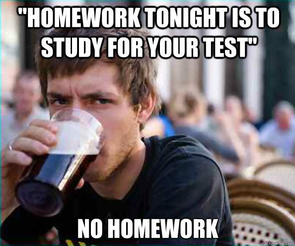 Lazy college senior meme homework