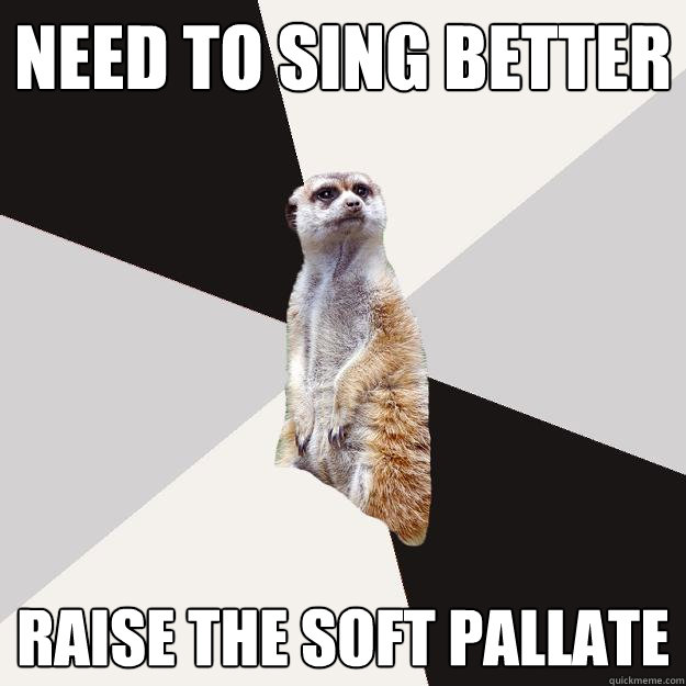 need to sing better raise the soft pallate