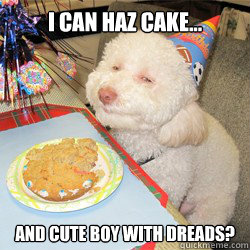 I can haz cake... AND cute boy with dreads?  birthday dog