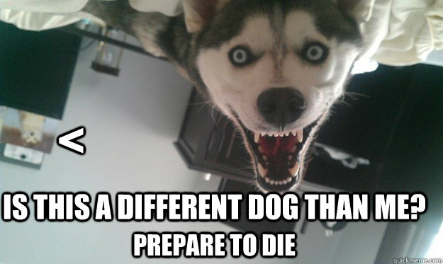 < Is this a different dog than me? Prepare to die - < Is this a different dog than me? Prepare to die  Overly Attached Dog