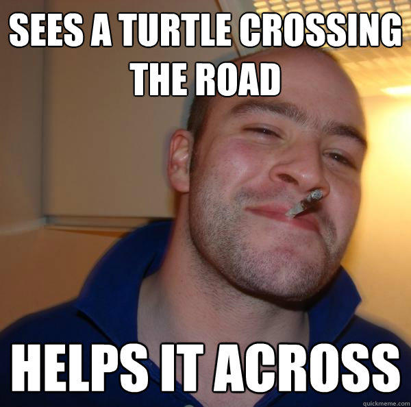 Sees a turtle crossing the road helps it across - Sees a turtle crossing the road helps it across  Good Guy Greg