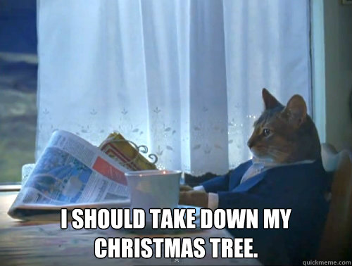 I should take down my Christmas tree. -  I should take down my Christmas tree.  The One Percent Cat