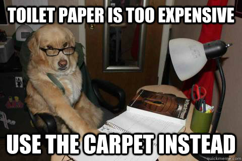 Toilet paper is too expensive Use the carpet instead  - Toilet paper is too expensive Use the carpet instead   Financial Advice Dog