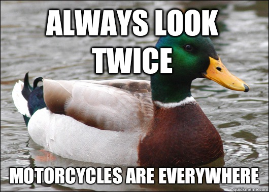 Always look twice Motorcycles are everywhere - Always look twice Motorcycles are everywhere  Actual Advice Mallard