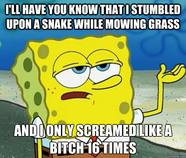 I'll have you know that i stumbled upon a snake while mowing grass and i only screamed like a bitch 16 times - I'll have you know that i stumbled upon a snake while mowing grass and i only screamed like a bitch 16 times  Tough Spongebob