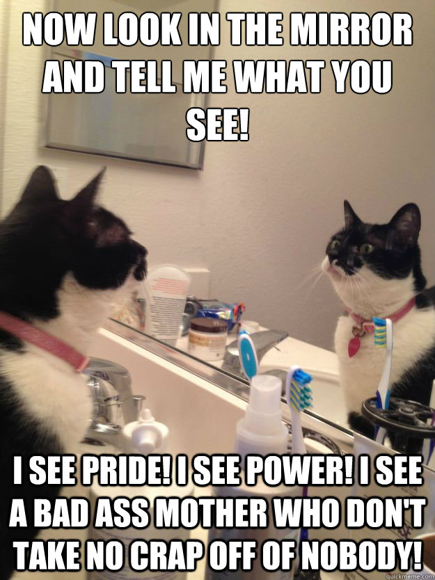 Now Look In The Mirror And Tell Me What You See I See Pride I See