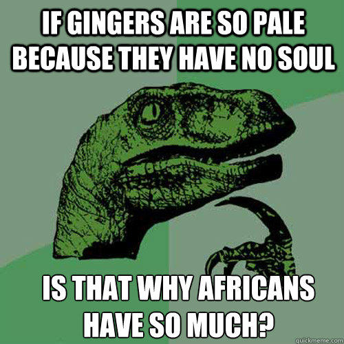 If gingers are so pale because they have no soul Is that why africans have so much? - If gingers are so pale because they have no soul Is that why africans have so much?  Philosoraptor
