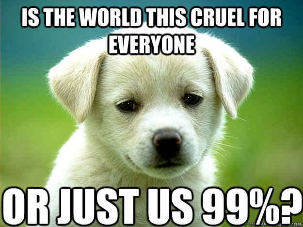 25 Best Memes About The World Is Cruel: Sad Puppy Memes