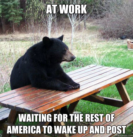 at work waiting for the rest of America to wake up and post - at work waiting for the rest of America to wake up and post  waiting bear