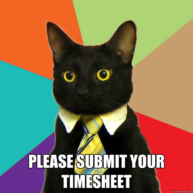 please submit your timesheet -  please submit your timesheet  Business Cat