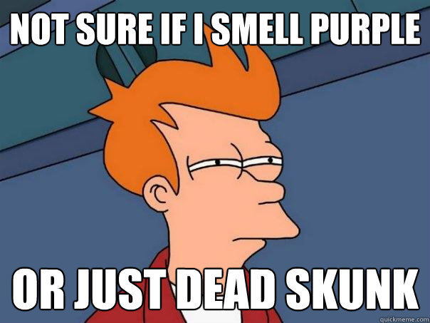 not sure if i smell purple or just dead skunk - not sure if i smell purple or just dead skunk  Futurama Fry