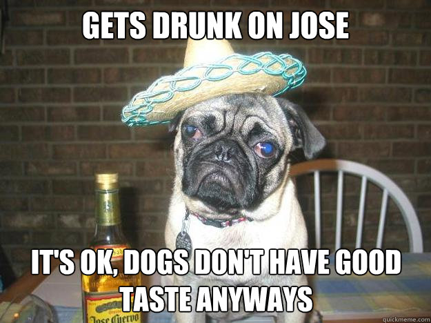 Gets drunk on Jose It's ok, dogs don't have good taste anyways