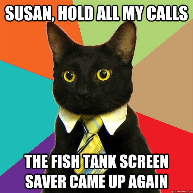 Susan, hold all my calls the fish tank screen saver came up again - Susan, hold all my calls the fish tank screen saver came up again  Business Cat