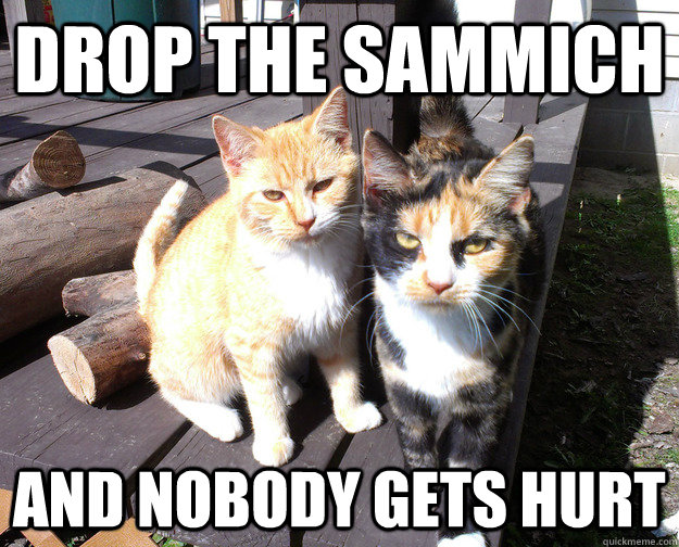 drop the sammich and nobody gets hurt bully cats quickmeme